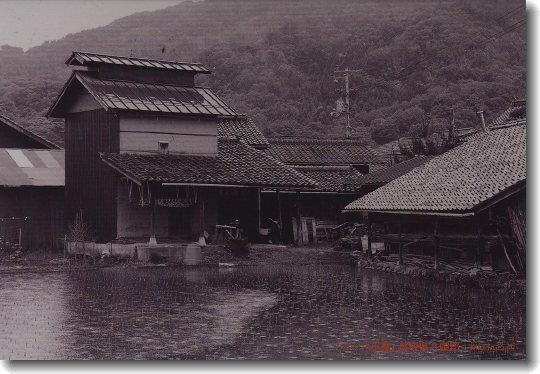 Beha_Kitada_2012_nenga_0.jpg