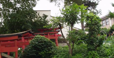 INOUE_torii.jpg