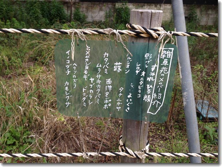 Nakamurabashi_140903_0.jpg