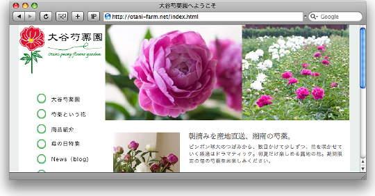 Otani_shakuyaku_0.jpg