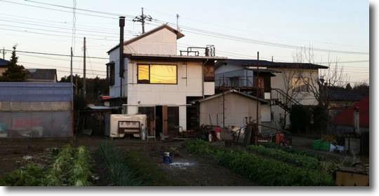 Shibukawa_110108_0.jpg