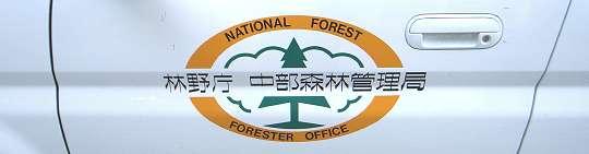 forester_car_1.jpg