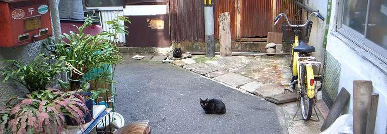 hiroshima_kuron_7.jpg