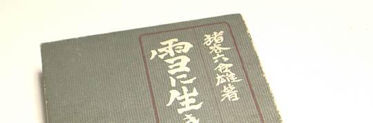igaya_yuki80_0.jpg