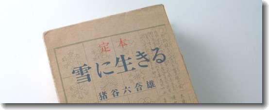 igaya_yuki_0.jpg
