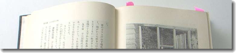 igaya_yuki_3.jpg
