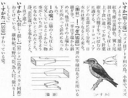 isuka_1.jpg