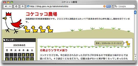 kokekokko_blog_1.jpg