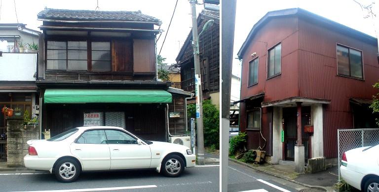nishiooi_4.jpg