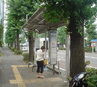 owada_bench_2.jpg